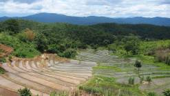 Rice terrace view from homestay in Karen Village