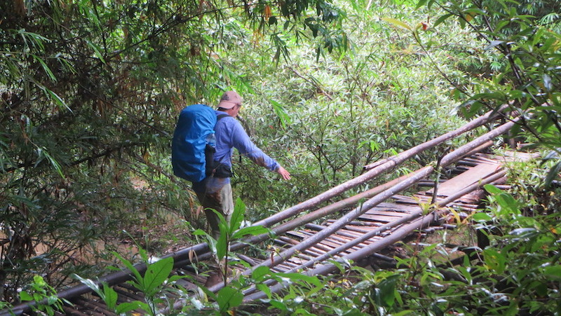 Crossing a bamboo bridge
