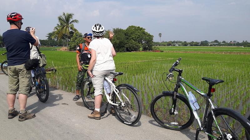 Mae Wang Cycling