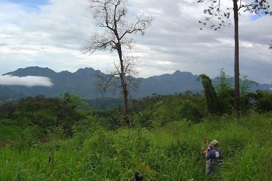 hilltribe trekking