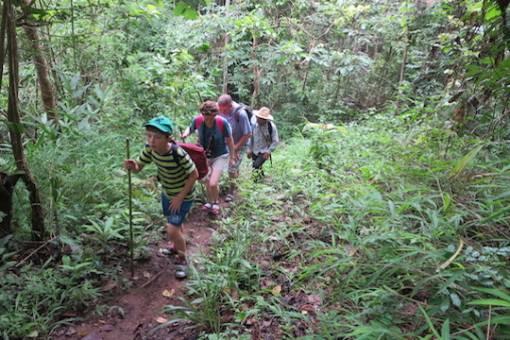 Jungle family adventure trekking tour