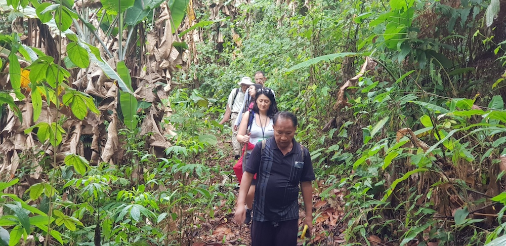 Group of guests trekking on Doi Suthep
