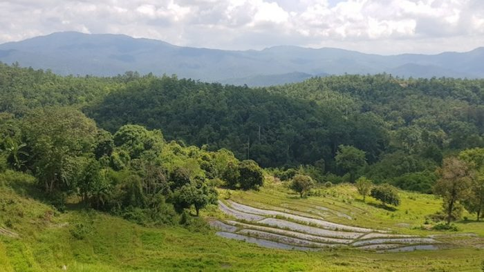 View of rice terraces and mountains Doi Inthanon trekking