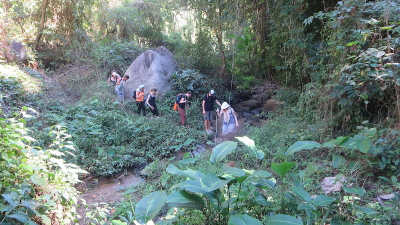 group of trekkers in the jungle