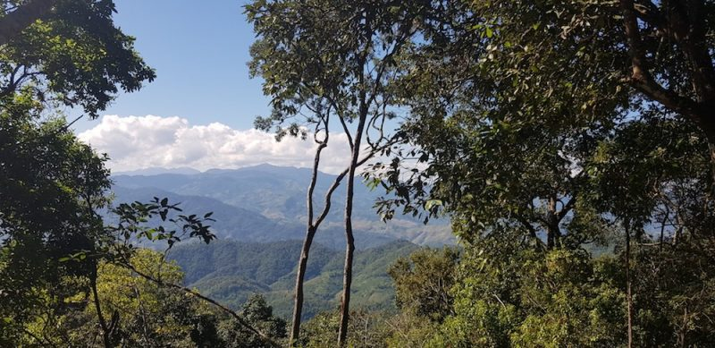 Doi Bo scenery on Chiang Rai Trekking