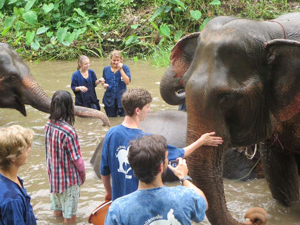 Elephant bath Karen Culture and Elephant Experience