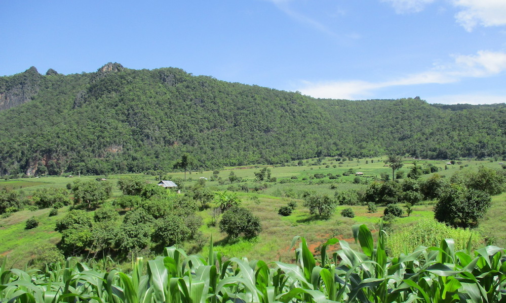 Clear day Chiang Dao landscape