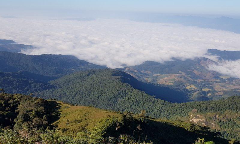 Sea of Clouds Doi Inthanon