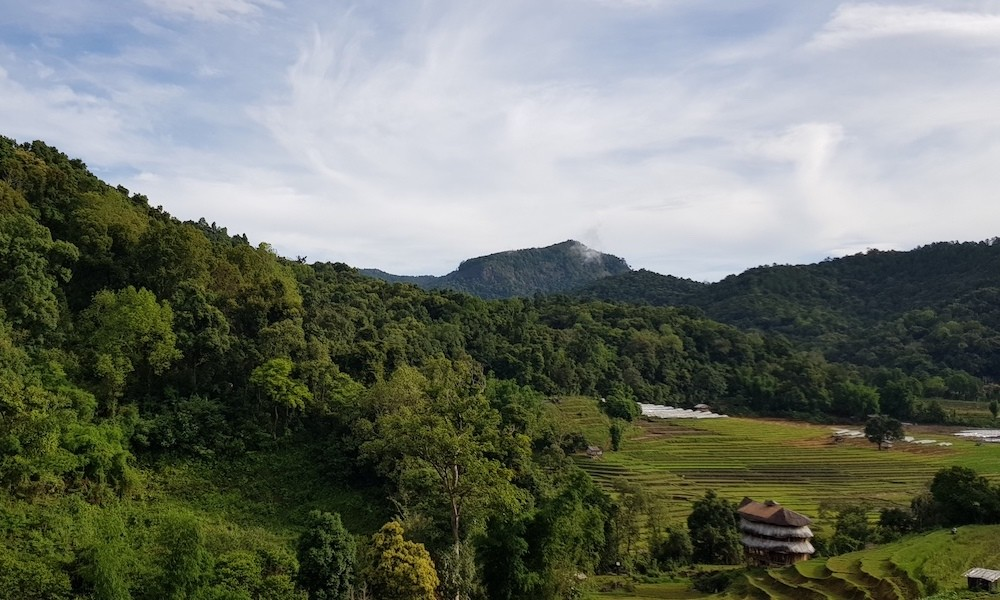 Doi Inthanon Pha Dok Siew hike view ricefields