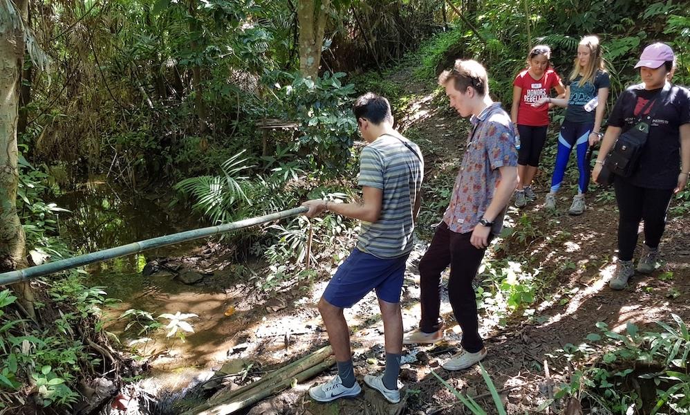 Tourists Trekking bamboo bridge