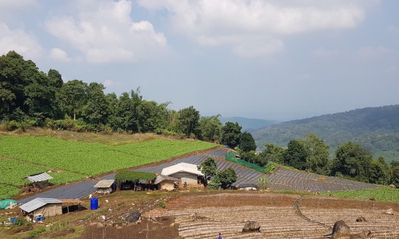 Ban Mae Sa Mai Hmong Village view of agricultural fields Hmong hill tribe