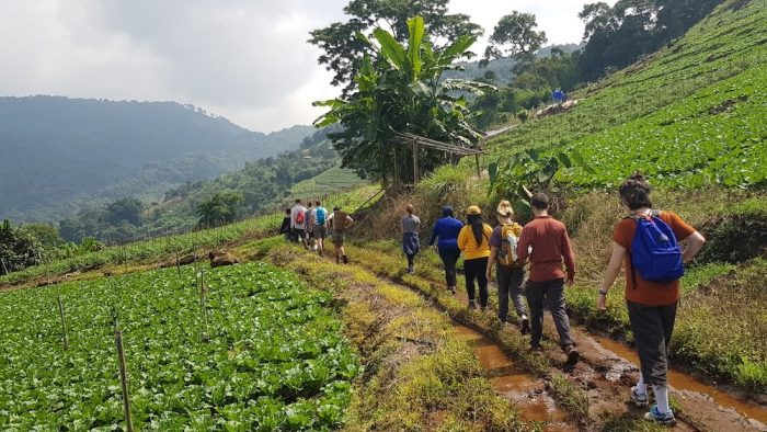 Tourists hiking Ban Mae Sa Mai Hmong Village Hmong Trekking