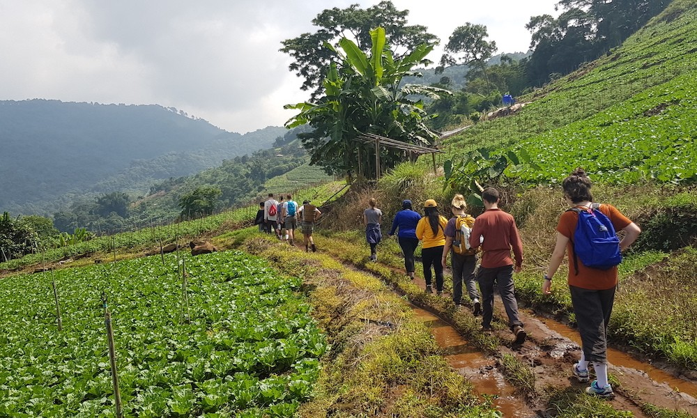 Tourists hiking Ban Mae Sa Mai Hmong Village best doi suthep trail