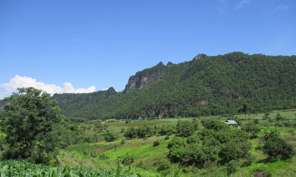 Green Chiang Dao landscape