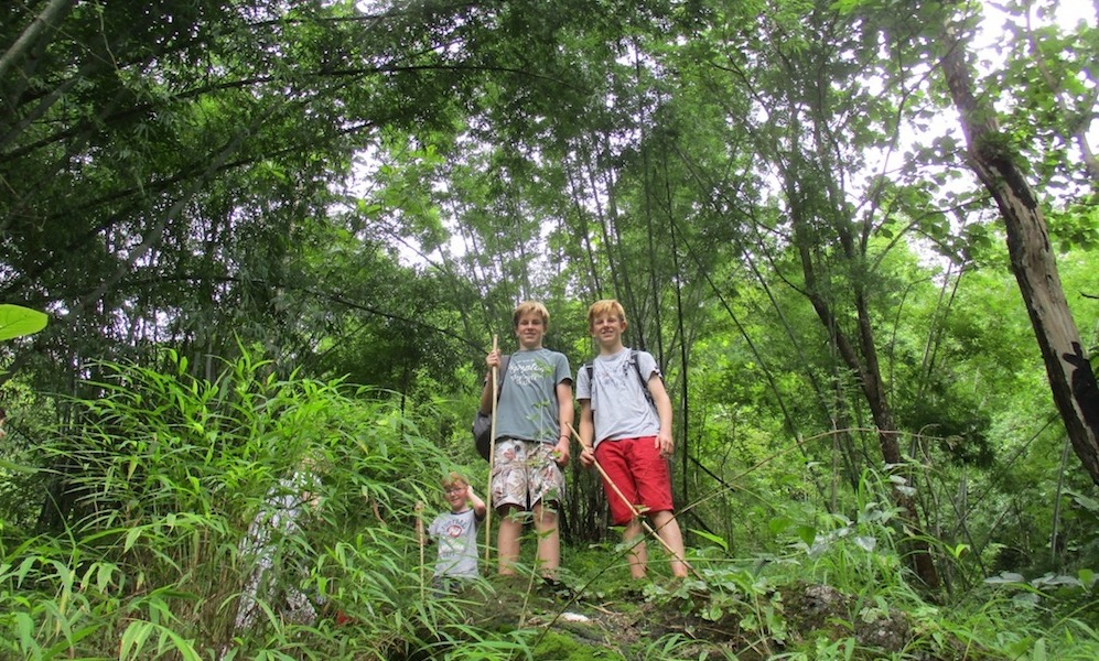Three boys in the forest Family trekking