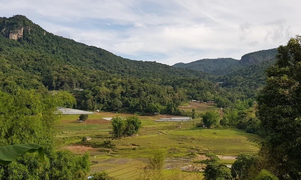 Doi Inthanon rice fields Pha Dok Siew vista