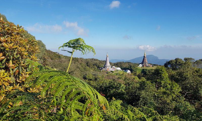 View on two Royal Chedis on Doi Inthanon