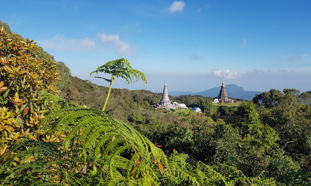 View on two Royal Chedis on Doi Inthanon