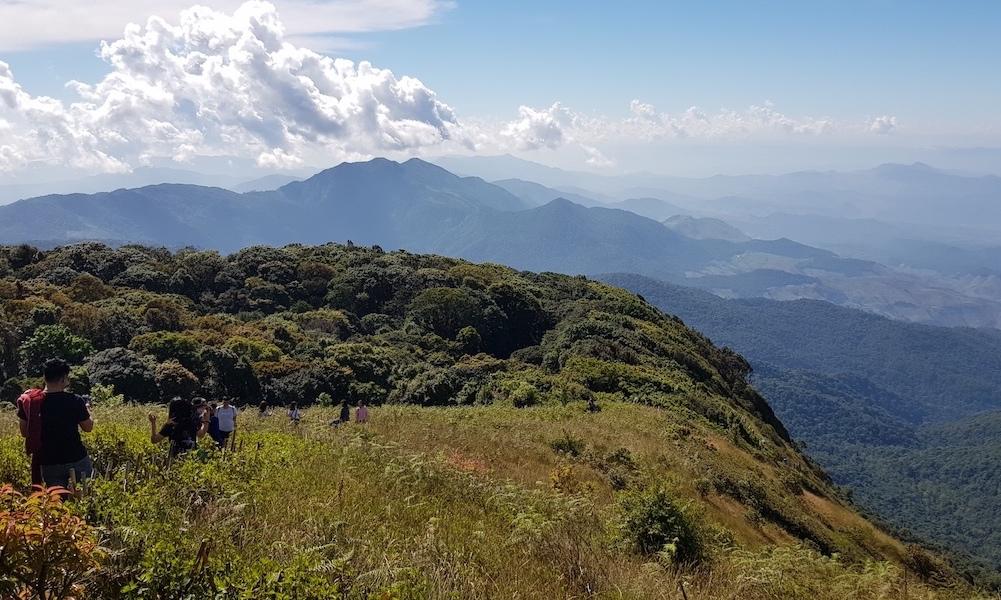 Nature Trail Doi Inthanon National Park
