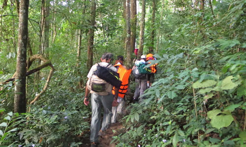 Trekking into the forest Huay Nam Dang