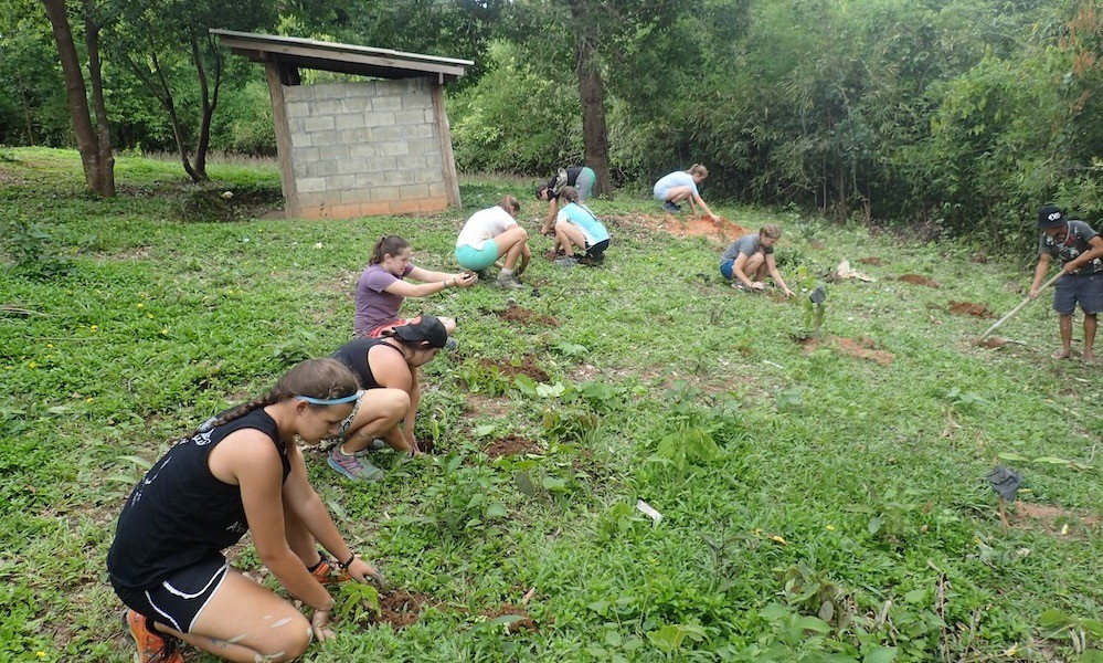 A number of Students working on the Royal Project Karen Village