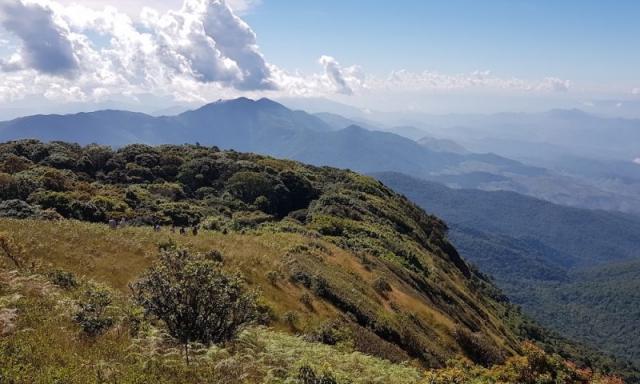 Kiw Mae Pan Nature Trail Doi Inthanon Tours