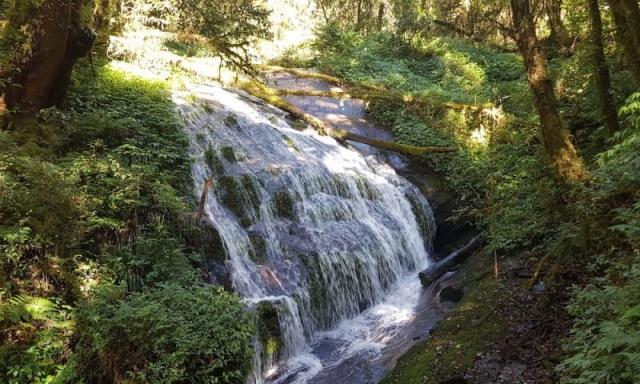 waterfall during hike Doi Inthanon