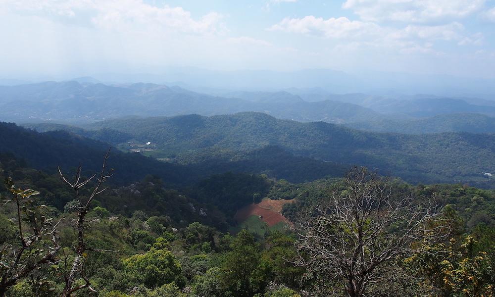Doi Pui Vista on a beautiful day