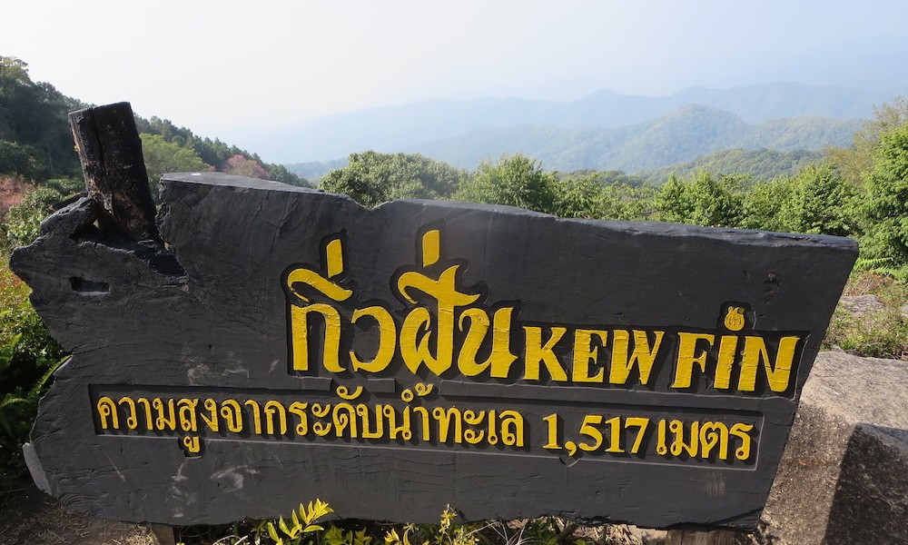 Sign with Kew Fin
