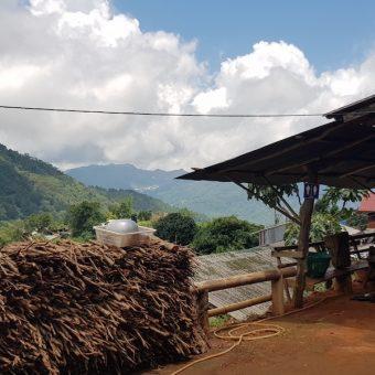 House of Sowmee Ban Mae Sa Mai