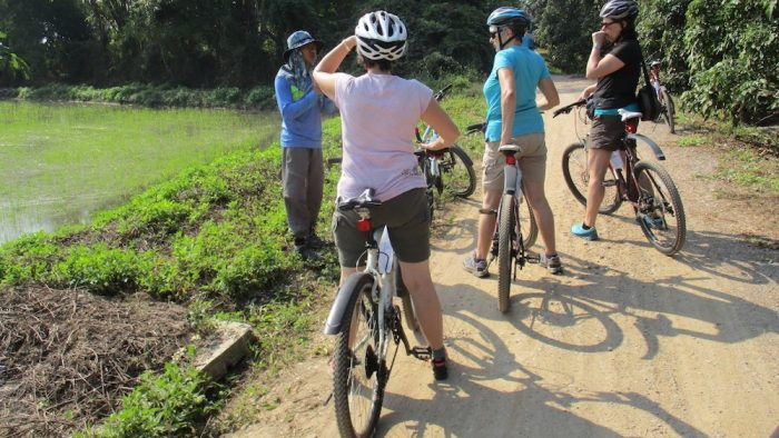 Nice bikeride San Patong Mae Wang Small Group Trekking