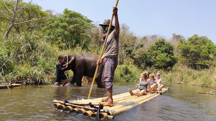 Guests on a raft passing an elephant on the Wang River Family Hill tribes