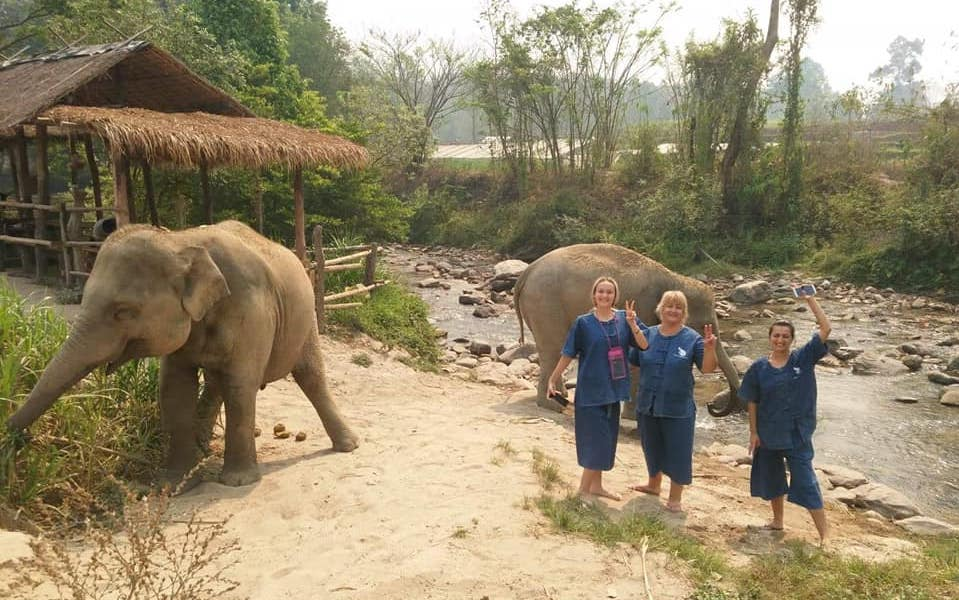 Elephant Paradise three guests having fun with elephants