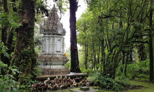 Shrine in the mossy forest Doi Inthanon