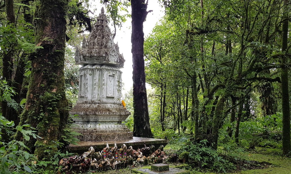 Shrine in the mossy forest