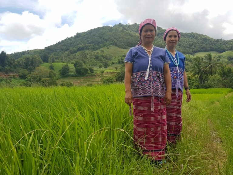 Two women in a ricefield