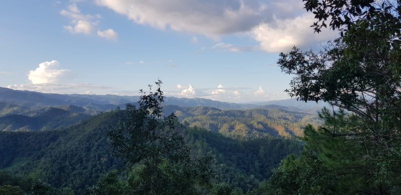 view on mountains and forests during sunset