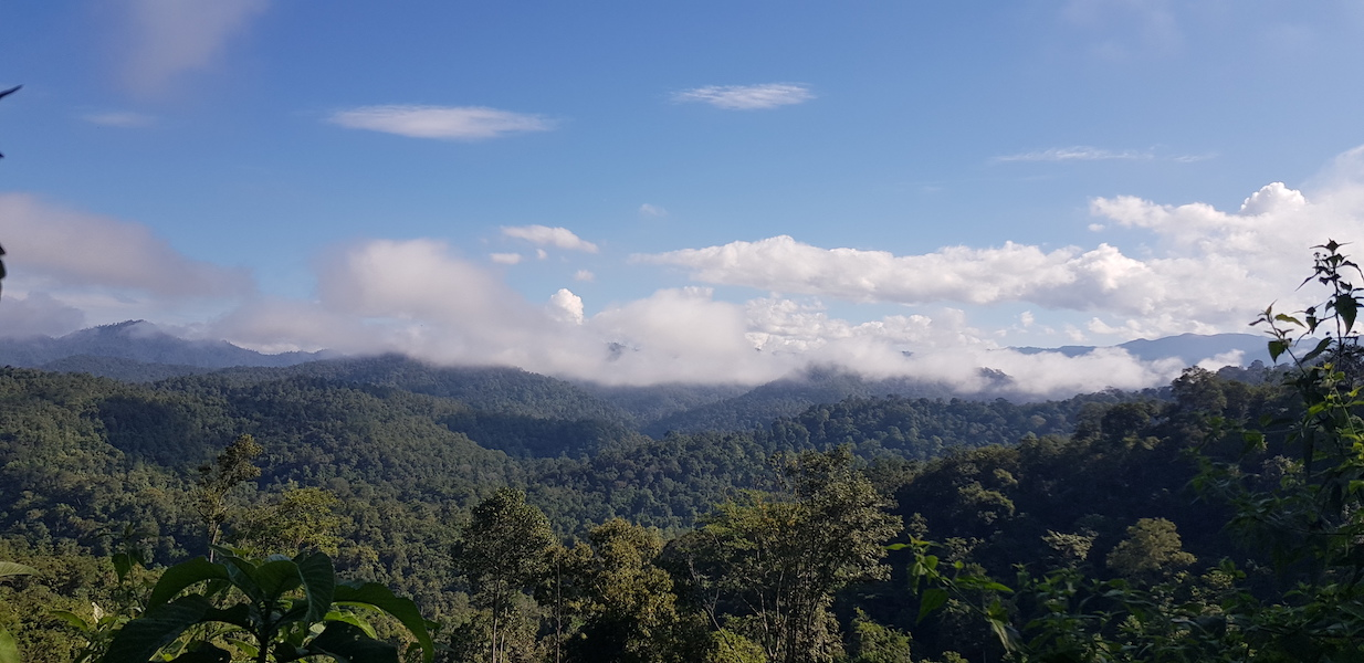 Clouds over mountains and forests
