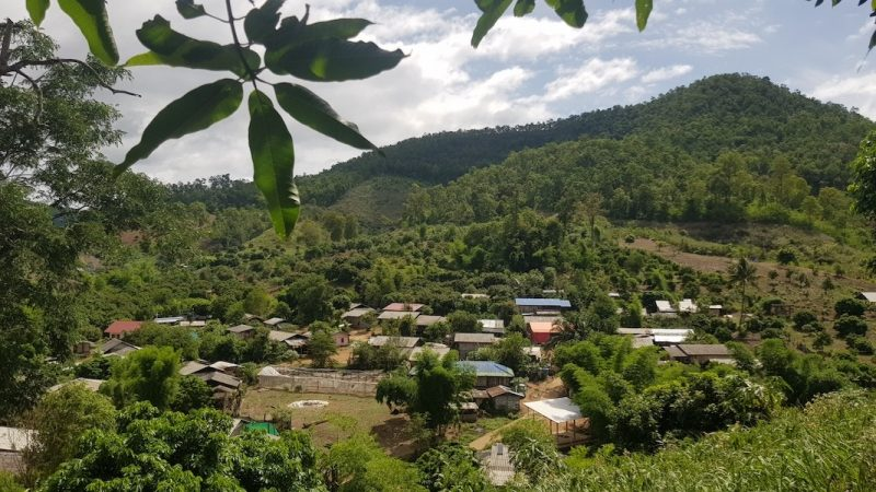 Village in forested valley