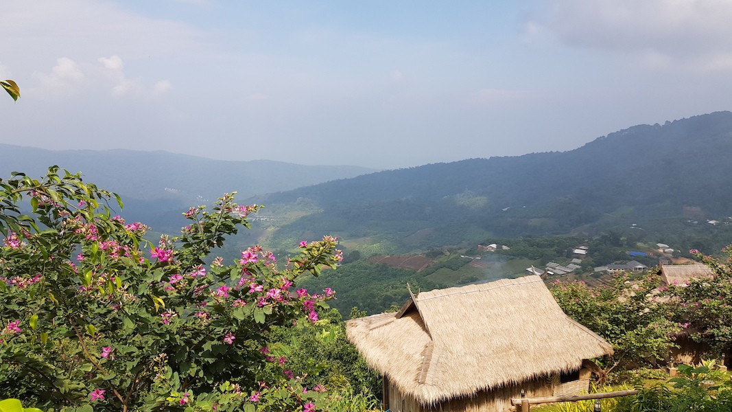 Flower and bamboo house with great view Hmong people