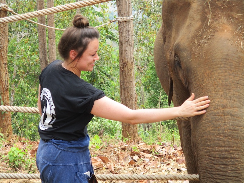 Student touching an elephant