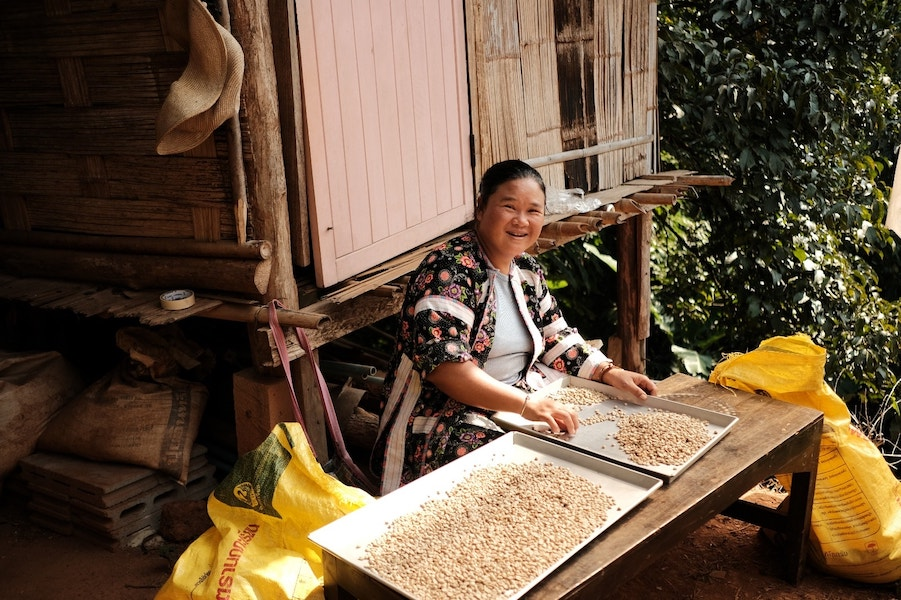 Smiling woman sorting coffee beans