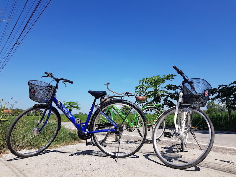 Three bicycles in the sun