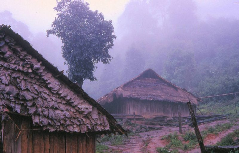 Village houses in the fog